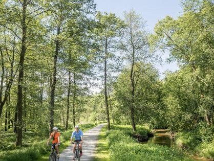 Rad- und Bikeoffensive Waldviertel